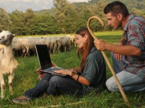 Azienda agricola, obbiettivo dei giovani imprenditori