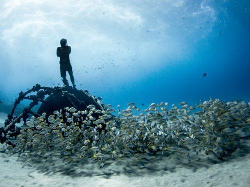 Online il portale Ocean Film Festival Italia
